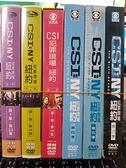 挖寶二手片-0122-正版DVD-影集【CSI犯罪現場 紐約 第1+2+3+4+5+6季 系列合售】-(直購價)