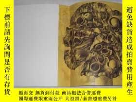 二手書博民逛書店蓮罕見欒偉麗(畫集)17608 欒偉麗 河北教育出版社 出版20