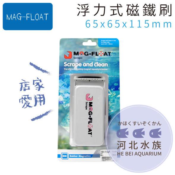 [ 河北水族 ] MAG-FLOAT 【 浮力式磁鐵刷(刮刀)L 】 浮力刷 磁力刷 魚缸清潔刷 除藻器 刮藻刀