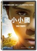 小小國DVD
