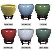 陶瓷魚缸養金魚缸烏龜缸睡蓮盆荷花缸碗蓮缸特魚缸客廳T