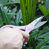 美樂棵園藝家居多用剪家用修枝剪種花植物盆栽修剪剪刀種植工具