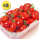 南投埔里特選頂級玉女小番茄4小盒*1組(約600g/盒)