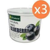 歐納丘晶鑽藍莓乾(210g*3罐)