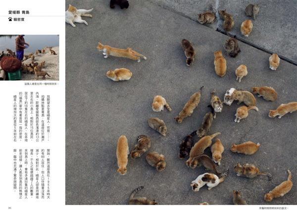 日本貓散步:來趟與喵星人不期而遇的暖心之旅吧!