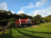 [苗栗]飛牛牧場-精緻單人田園美食一日遊