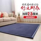 地毯簡約加厚珊瑚絨地毯客廳臥室滿鋪可愛床...