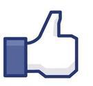 【Facebook貼文讚/FB留言讚軟體】 FB圖片相片按讚 FB動態讚 FB投票 FB貼文讚 另有FB貼文留言