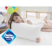 [Snug Nights]國際抗菌技術sanitized山寧泰☆45×75cm防蹣抗菌四孔纖維枕
