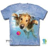 【摩達客】(預購)美國進口 The Mountain 水中黃金獵犬 純棉環保短袖T恤(YTM104175779167)