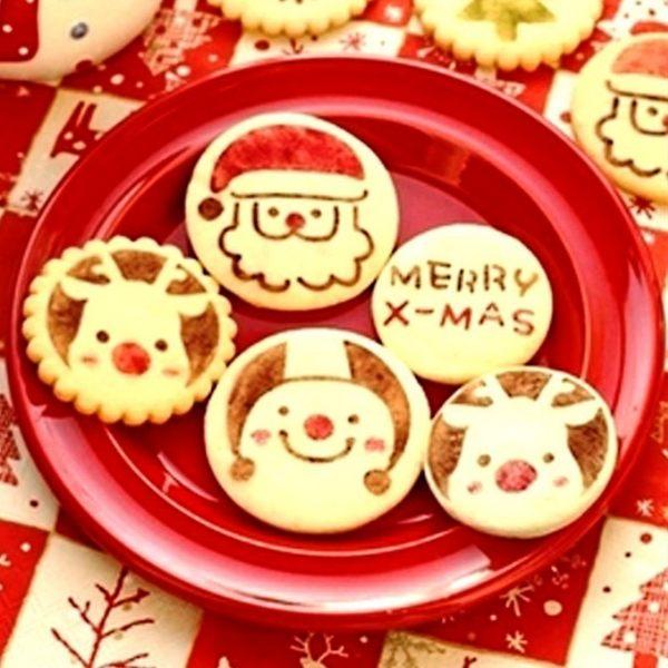 聖誕系糖粉篩 噴花模 蛋白糖霜 翻糖蛋糕工具 多款任選 想購了超級小物