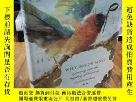二手書博民逛書店Why罕見Birds Sing: A Journey Into
