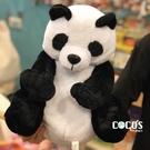 正版授權 休眠動物園 熊貓 絨毛玩偶 娃娃 COCOS TY300