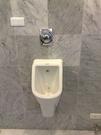【麗室衛浴】德國 DURAVIT D-CODE系列 小便斗 白色 (不含沖水零件)