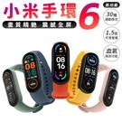小米手環6 台灣保固一年 標準版 黑色 NCC認證 智慧手環 智慧手錶 繁體中文 運動 心率監測