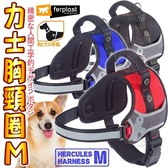 【🐱🐶培菓寵物48H出貨🐰🐹】義大利ferplast富寶》寵物力士胸頸圈-M
