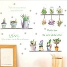 Loxin 壁貼 清新盆栽 牆貼 無痕壁貼 花草壁貼 可愛壁貼 diy壁貼紙 背景貼【SF1606】