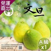 【預購】水果爸爸-FruitPaPa 葫蘆墩48年老欉A級柚子文旦禮盒 10斤/箱x1箱【免運直出】