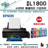 【兩年保固】EPSON L1800  A3原廠連續供墨印表機+一組墨水