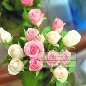 花卉種子 玫瑰花種子易活盆栽花草植物適合秋冬天種的花種籽子室內四季開花-三山一舍