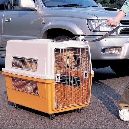 【培菓幸福寵物專營店】【IRIS】運輸籠專用輪&拉帶(CCS-40S)