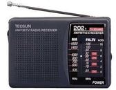 Tecsun/德生 R-202T英語四六級考試袖珍式調頻調幅收音機電視伴音 七夕情人節85折