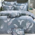 《DUYAN竹漾》100%精梳棉雙人六件式床罩組-沫羽翩翩
