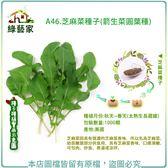 【綠藝家】A46.芝麻菜種子1000顆(箭生菜圓葉種)