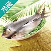 肉質鮮甜台灣虱目魚1尾(300~400g/尾)【愛買冷藏】