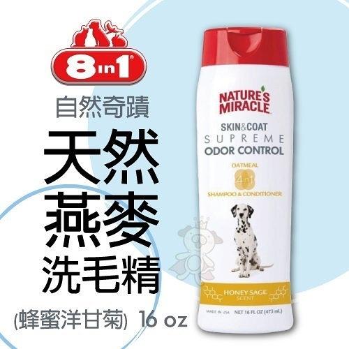 『寵喵樂旗艦店』8in1 自然奇蹟 天然燕麥洗毛精(蜂蜜洋甘) 16 oz/瓶 犬專用