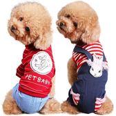 狗狗泰迪冬裝幼犬比熊貓咪小型犬小狗寵物 錢夫人小鋪