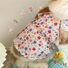 貓咪衣服夏季薄款防掉毛公主裙子寵物狗狗小型犬碎花夏裝 樂淘淘
