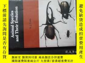 二手書博民逛書店Animal罕見Species and Their EvolutiouY6713 A.J.Cain 略