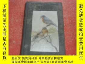 二手書博民逛書店LITTLE罕見NATURE LIBRARY BIRDS1925