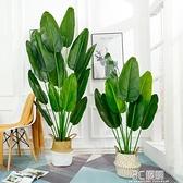 仿真植物旅人蕉落地天堂鳥ins風客廳花裝飾假盆栽綠植北歐大型樹 3C優購