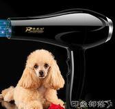 寵物吹風機大功率狗狗專用吹毛神器金毛泰迪貓咪大小型犬吹水機 全館免運