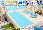 涼墊~IceCool 凝膠枕頭墊~55x30 公分冷凝墊取代麻將竹蓆~1 公斤~專利枕頭