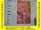 二手書博民逛書店素質教育研究論壇罕見2005-05(納荷芽增刊) 蒙文Y259485