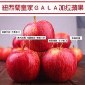 每顆29元起【果之蔬-全省免運】紐西蘭gala最新鮮的蘋果1盒(2.5kg±10%/盒 每盒15顆)