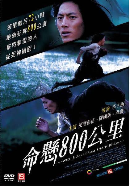 命懸800公里 DVD(購潮8)