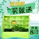養殖箱烏龜缸蠶寶寶巨型套裝學生養蠶孵化春蠶飼養箱盒子盒房子小學生的別墅YJT 【快速出貨】