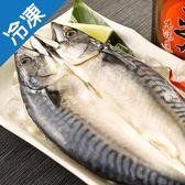 【來自挪威】整尾薄鹽鯖魚一夜干1尾 (280~320g/尾)【愛買冷凍】