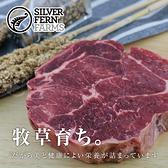 【超值免運】紐西蘭銀蕨PS熟成巨無霸沙朗牛排~超厚切2片組(450公克/1片)