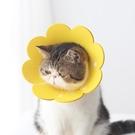 太陽花伊麗莎白圈海綿頭套