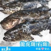 【台北魚市】 龍虎斑(石斑) 550g±10%