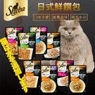 【培菓平價寵物網】日本SHEBA》日式鮮饌包系列貓餐包-35g~40g