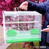 鳥籠鴿子籠虎皮鸚鵡八哥繡眼百靈斑鳩鷓鴣鳥籠子大號特大號養殖籠WD 溫暖享家