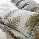 鴻宇 雙人床包組 100%精梳純棉 葉夜 台灣製C20105