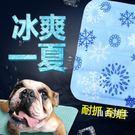 (萬聖節)夏季狗狗涼席寵物冰墊凝膠涼墊夏天降溫貓咪狗墊子貓耐咬狗窩睡墊WY