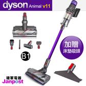 Dyson 戴森 V11 SV14 Animal 無線手持吸塵器 集塵桶加大版 六吸頭組/送床墊吸頭/建軍電器